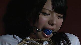 Rpd-002 自由なきアtル被虐肉体で弁済する少女 上原亜衣